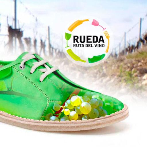 Винные туры из Мадрида в <nobr>Д. О. Руэда</nobr> D.O. Rueda