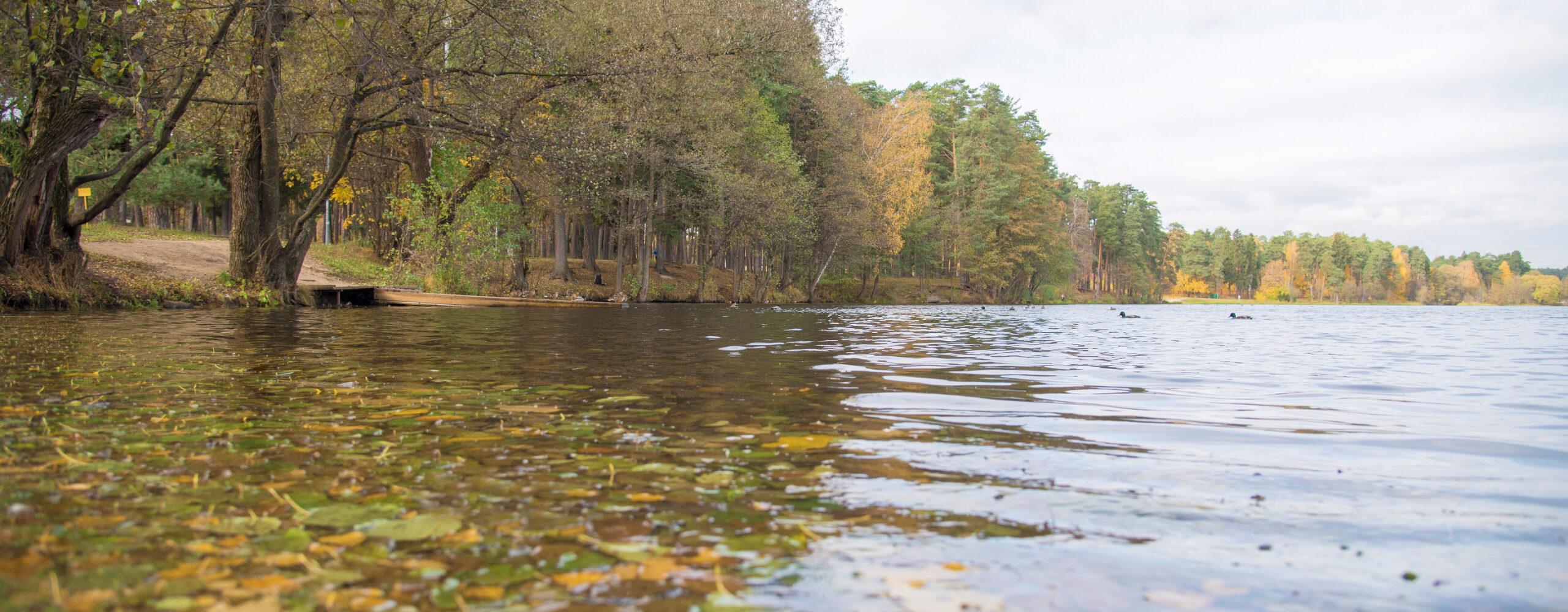 Кратовское озеро воктябре.