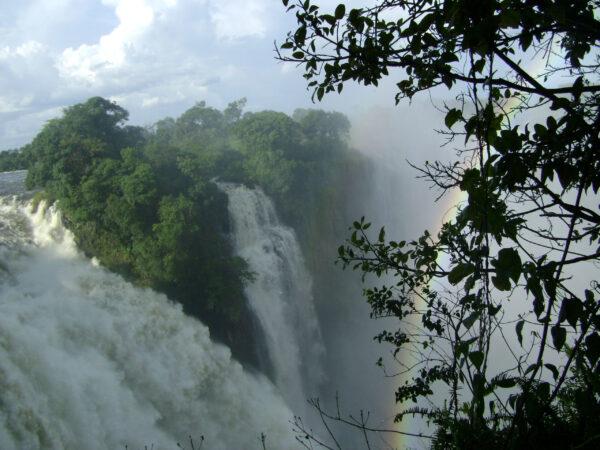 ЮАР Зимбабве Ботсвана