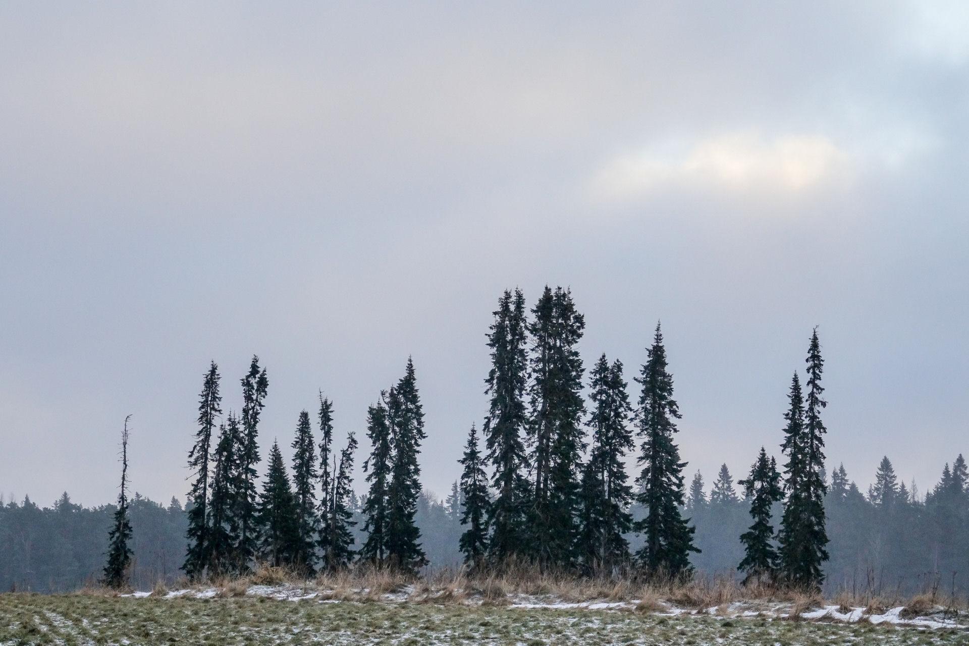 Остров Валаам. Рождество 2017. Природа часть 1.