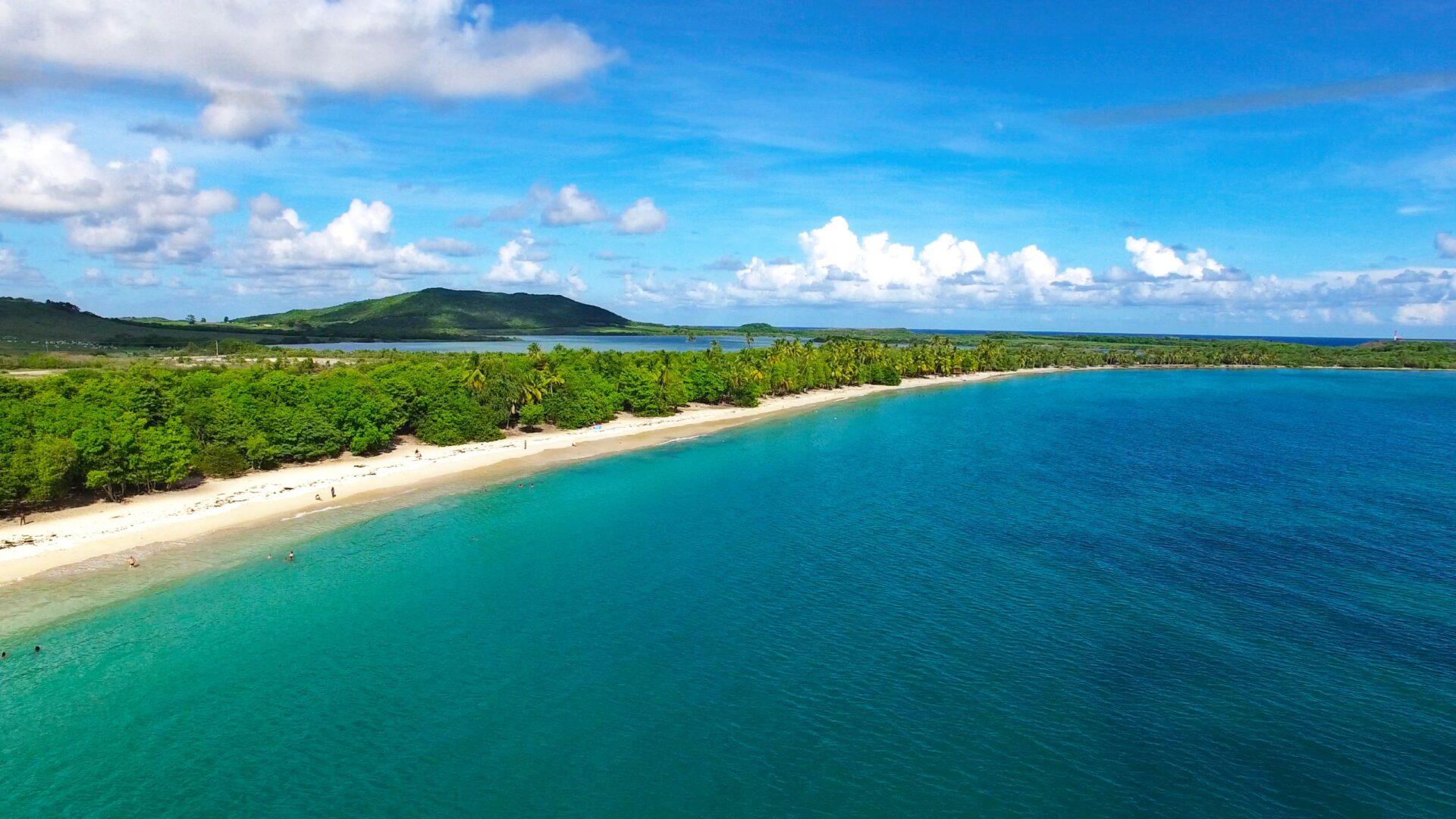 Мартиника своздуха