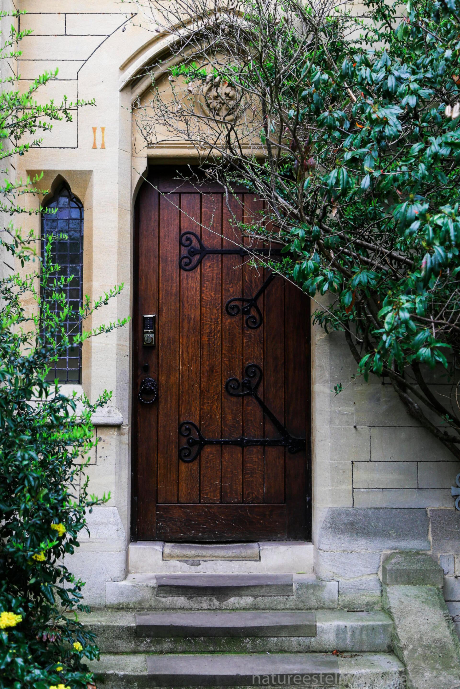 Два облика Оксфорда