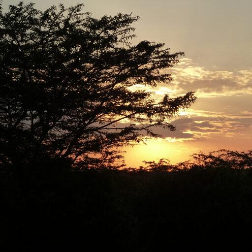 Кенийское солнце. Найваша. Бегемотный рай