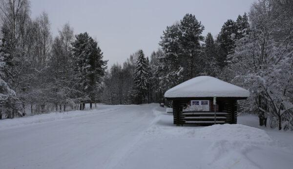 Снежная история Мистического леса идревнего замка Святого Олафа вСаволинна