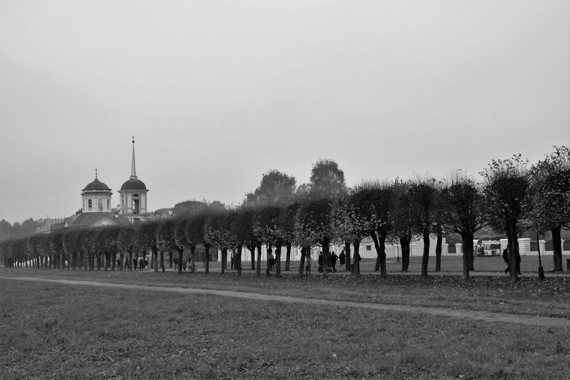 Туманная суббота вКусково