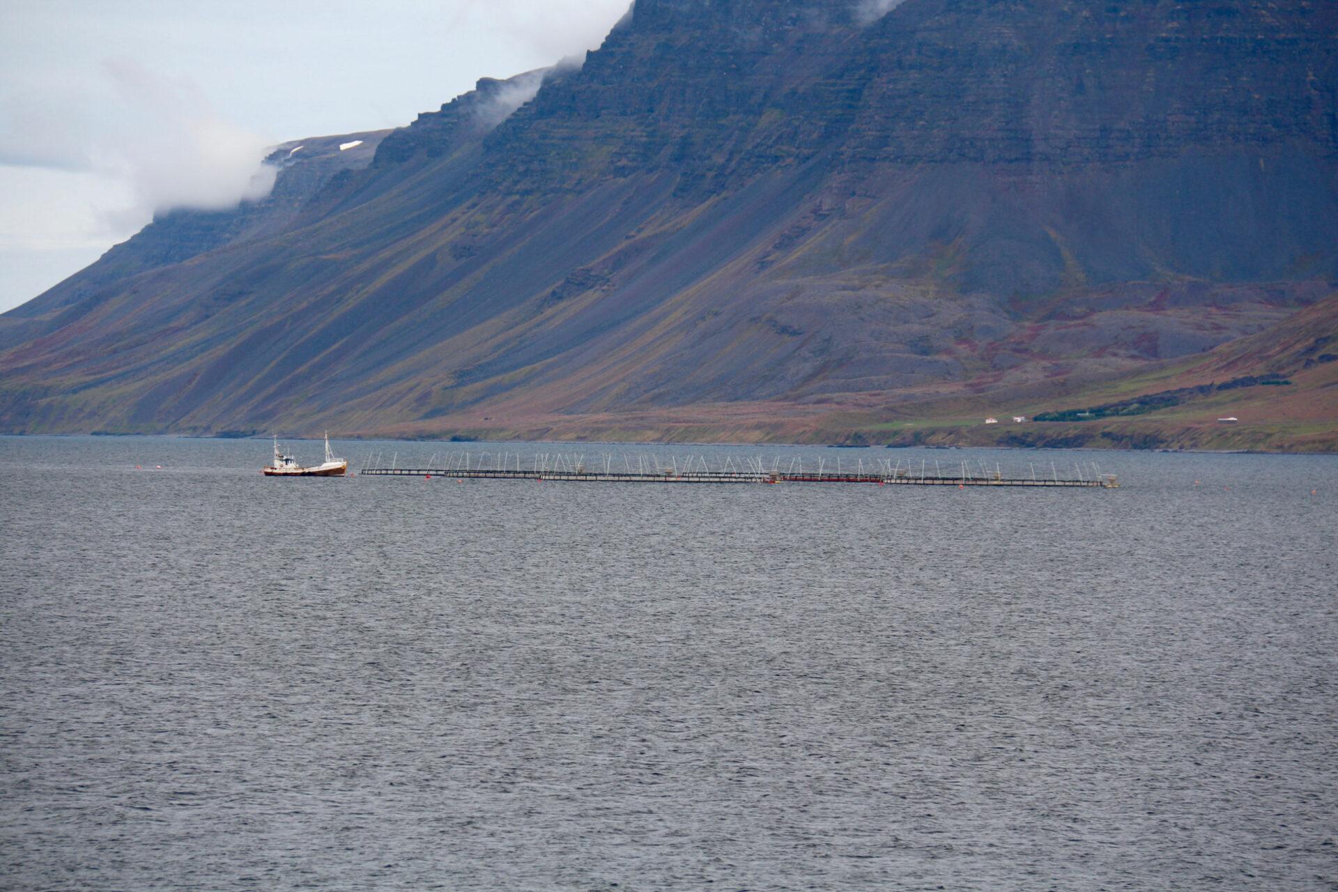 Западные фьорды Исландии. Часть вторая.